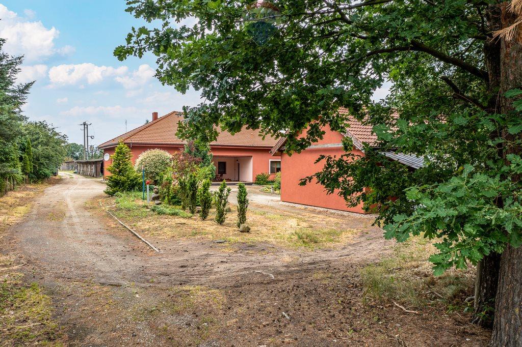 Działka przemysłowo-handlowa na sprzedaż Złotkowo, Pasieka  36300m2 Foto 6