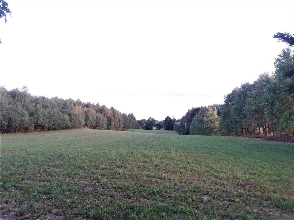 Działka rolna na sprzedaż Puc, Kościerzyna  60000m2 Foto 2