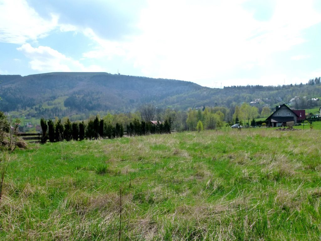 Działka inwestycyjna na sprzedaż Kozubnik  5800m2 Foto 3