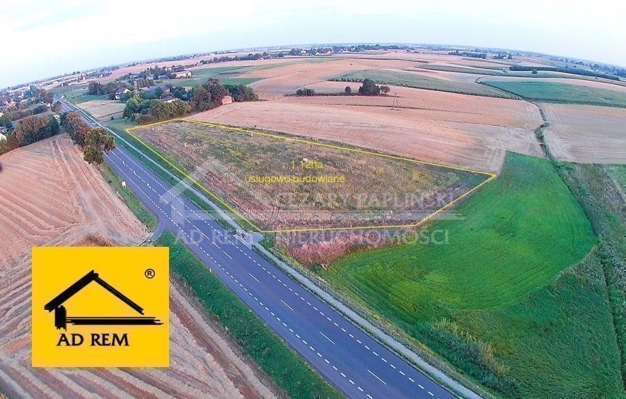 Działka inwestycyjna na sprzedaż Bogucin  11200m2 Foto 2
