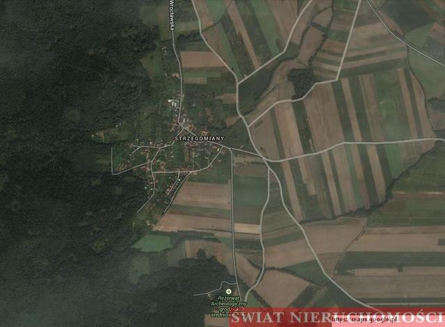 Działka siedliskowa na sprzedaż Strzegomiany  13100m2 Foto 1