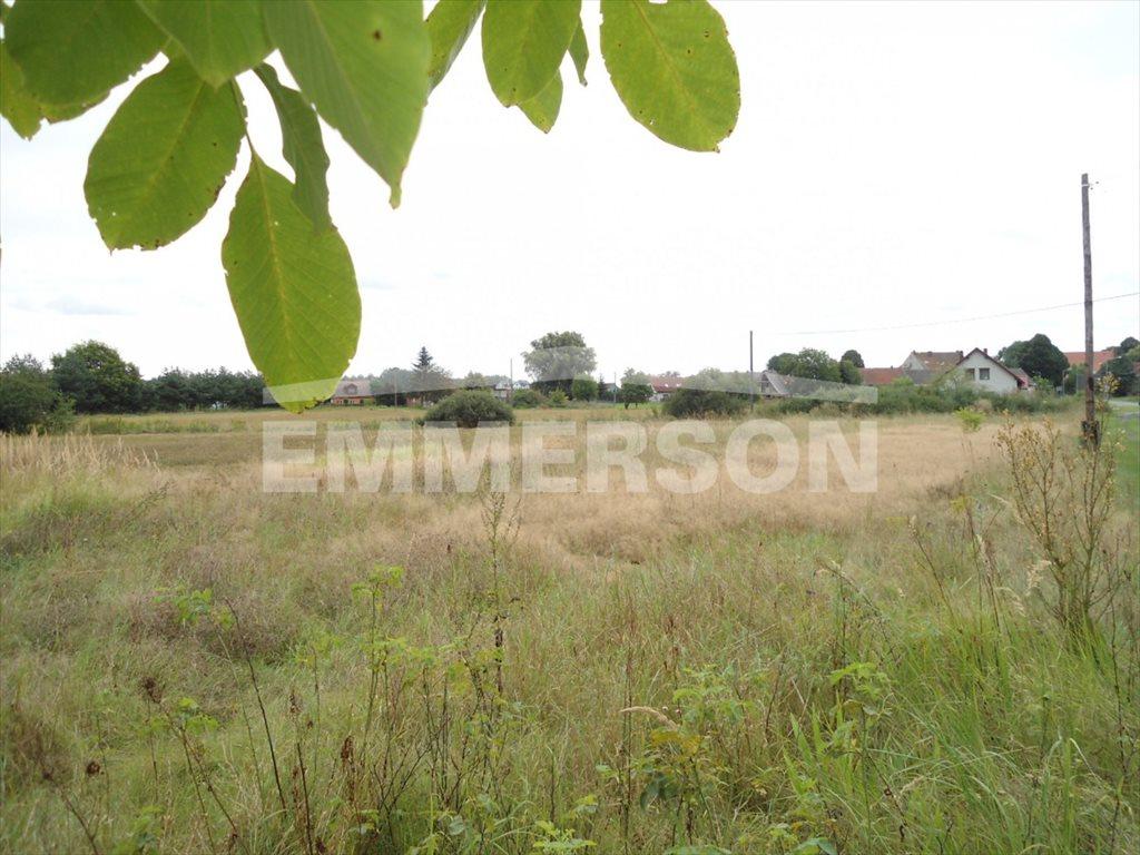 Działka budowlana na sprzedaż Lubnów  1700m2 Foto 3