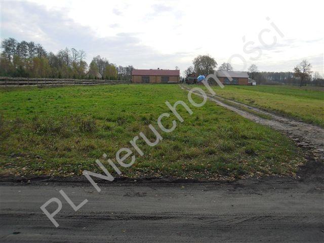Działka leśna na sprzedaż Wólka Wybraniecka  12500m2 Foto 6