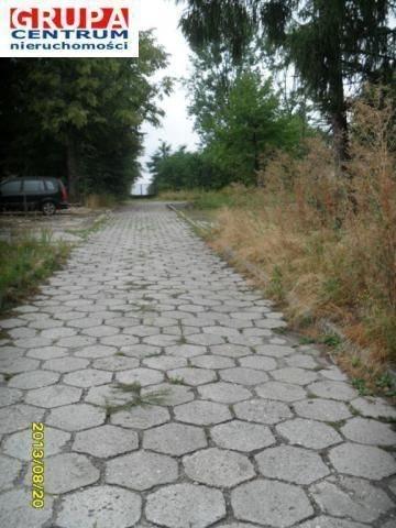 Lokal użytkowy na wynajem Pyskowice  1000m2 Foto 9