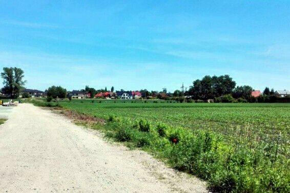 Działka siedliskowa na sprzedaż Iwiny  1750m2 Foto 4