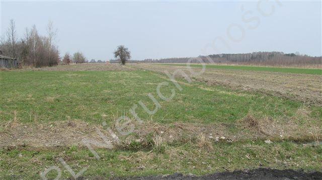 Działka rolna na sprzedaż Tyborów  1967m2 Foto 4