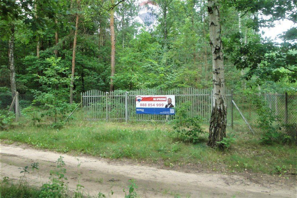 Działka rekreacyjna na sprzedaż Lasek, Sosnowa  5307m2 Foto 11
