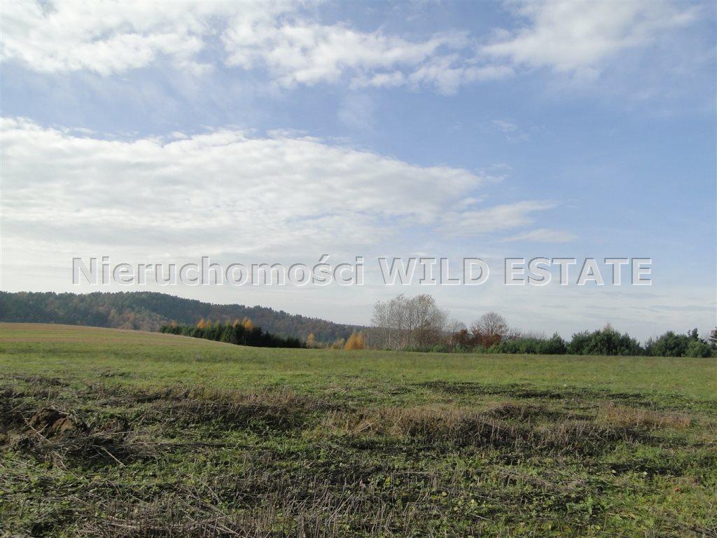 Działka rolna na sprzedaż Solina, Berezka  10398m2 Foto 6