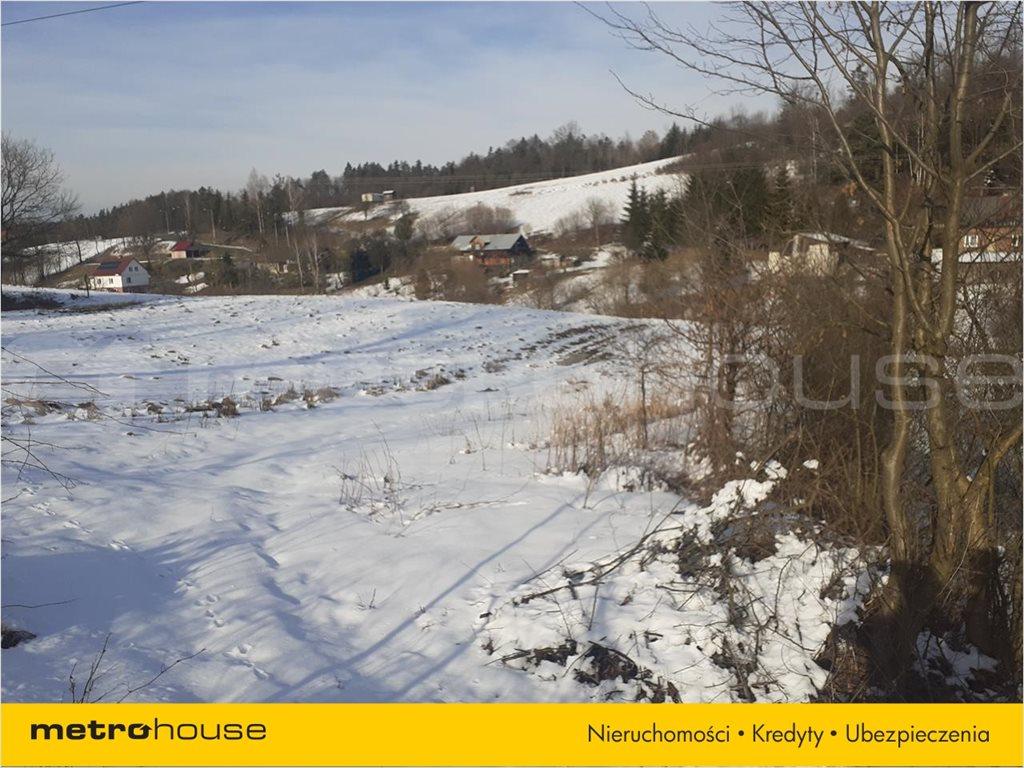 Działka rolna na sprzedaż Orelec, Olszanica  9700m2 Foto 4