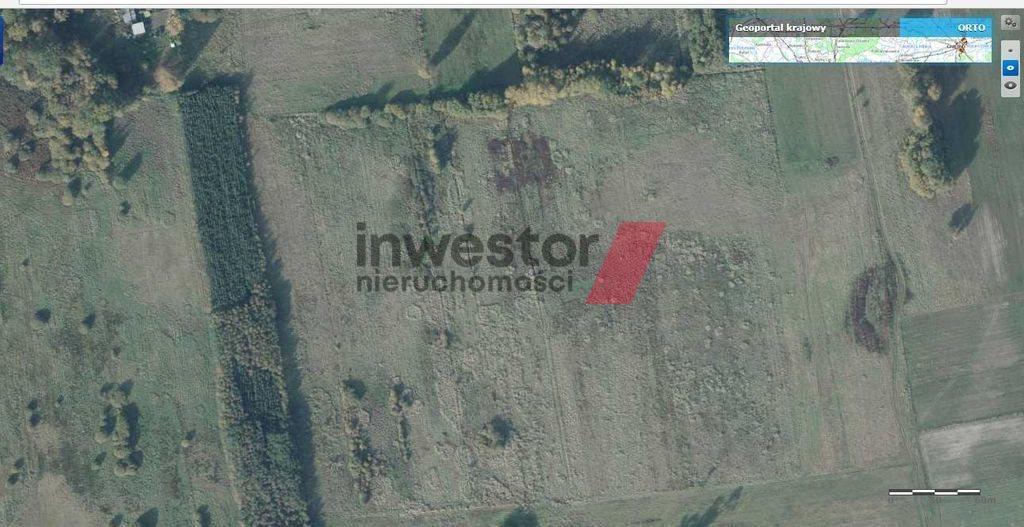 Działka rolna na sprzedaż Wieńkowo  12200m2 Foto 3