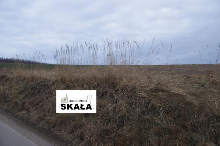 Działka budowlana na sprzedaż Wola Kalinowska  2700m2 Foto 2