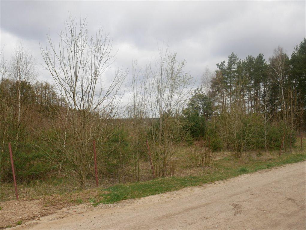 Działka budowlana na sprzedaż Strzepcz, ks. Blocków  1529m2 Foto 1