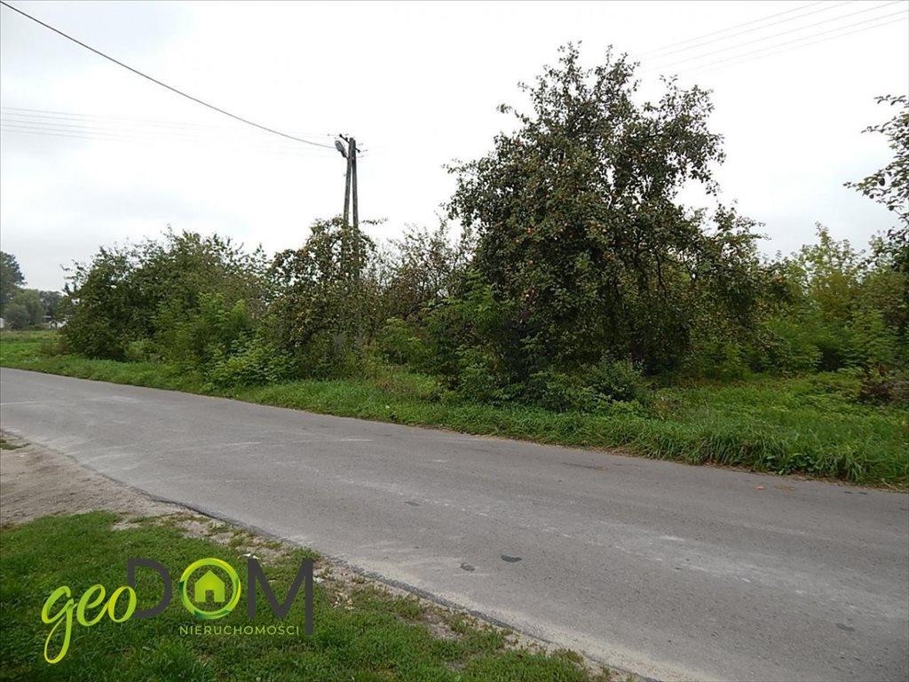 Działka rolna na sprzedaż Horodyszcze-Kolonia  11293m2 Foto 9