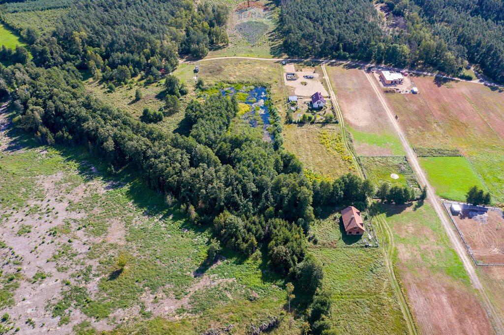 Działka budowlana na sprzedaż Zasutowo, Leśna  13193m2 Foto 13