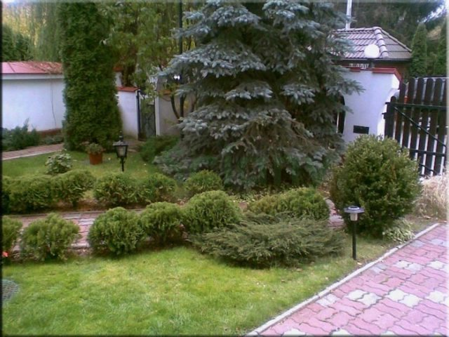 Dom na wynajem Warszawa, Wilanów  450m2 Foto 5