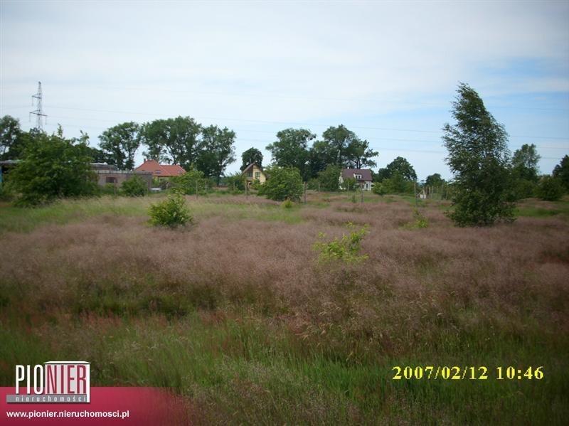 Działka rolna na sprzedaż Rurzyca  1368m2 Foto 5