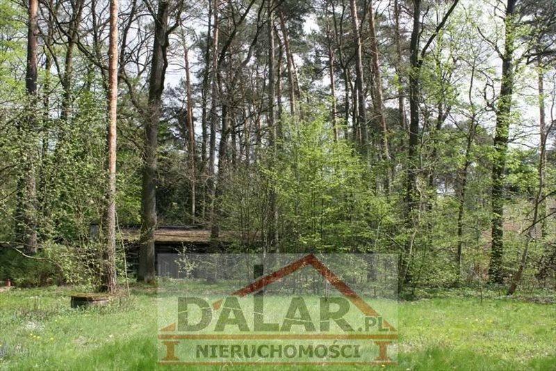 Działka inna na sprzedaż Piaseczno, Zalesie Dolne  4252m2 Foto 6