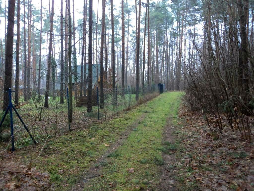 Działka budowlana na sprzedaż Grodzisk Mazowiecki, Grzymek  1200m2 Foto 2