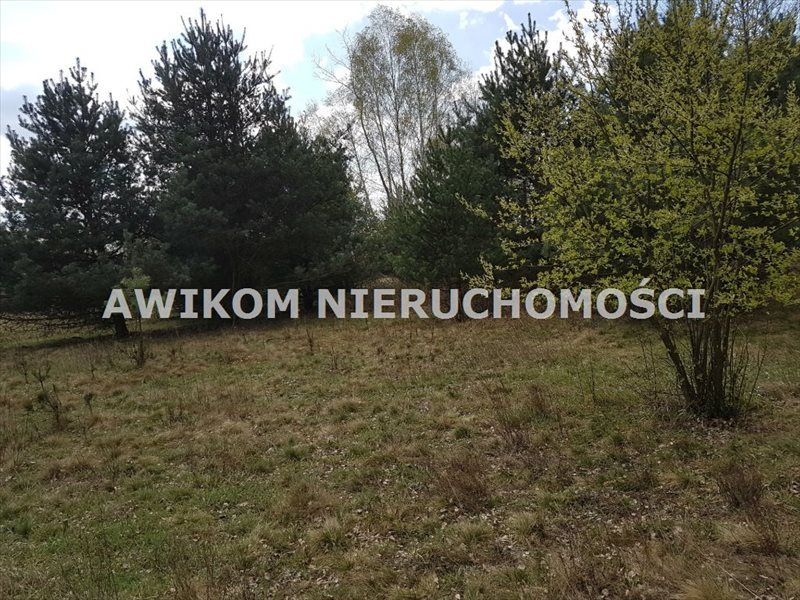 Działka budowlana na sprzedaż Jaktorów, Jaktorów Kolonia  1100m2 Foto 7