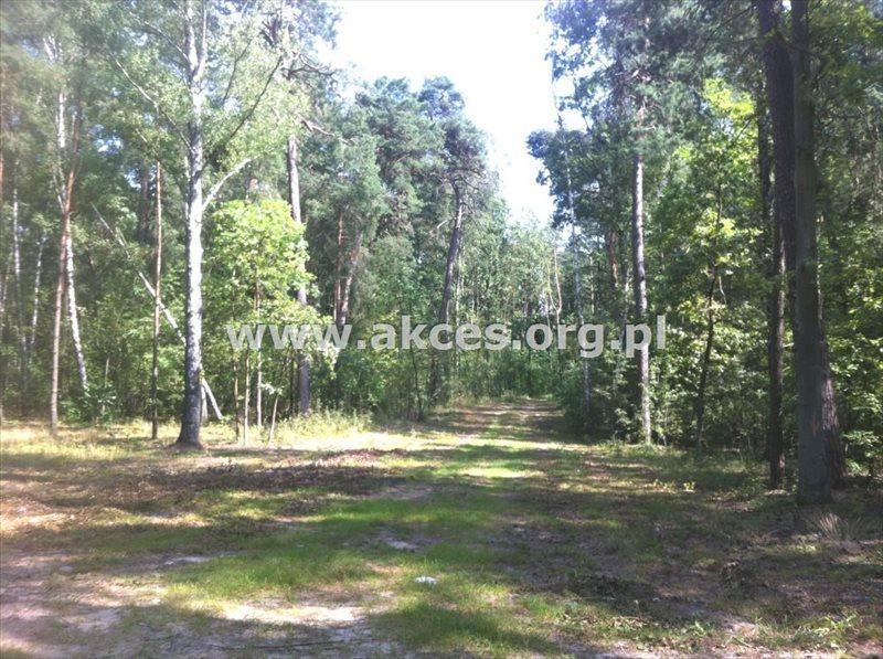 Działka inna na sprzedaż Sękocin Stary, Sękocin-Las  2100m2 Foto 2
