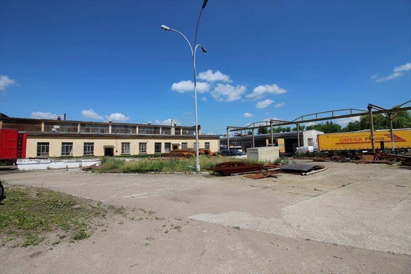 Lokal użytkowy na sprzedaż Radymno, Złota Góra  4849m2 Foto 10