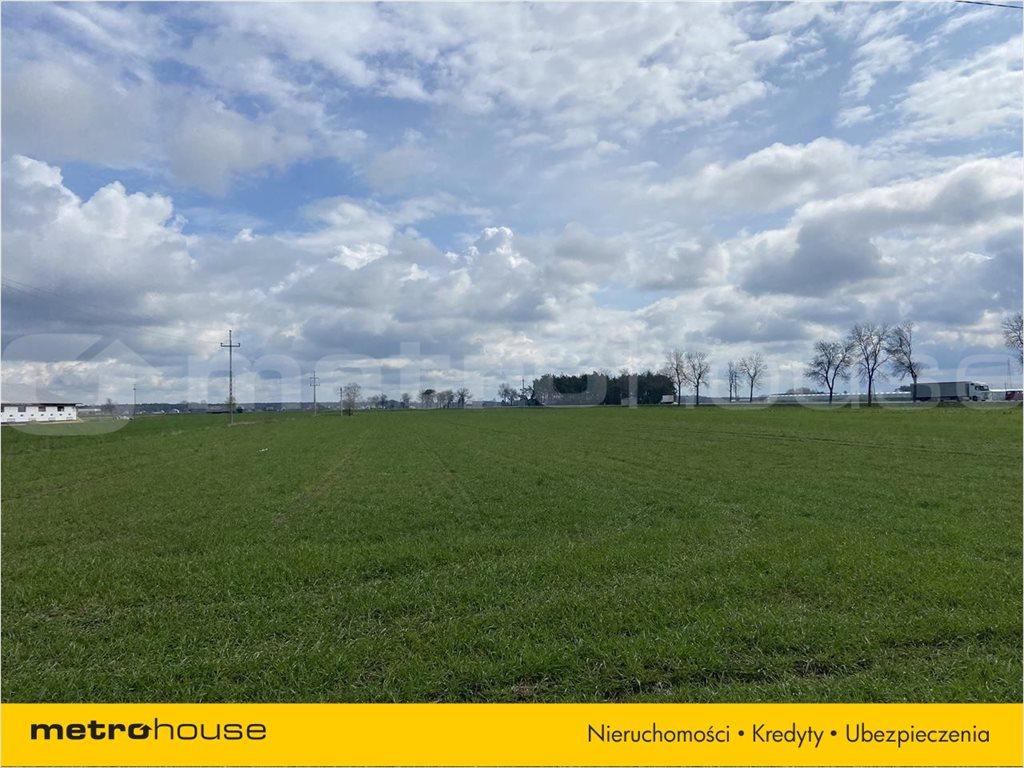 Działka rolna na sprzedaż Rogoźnica, Międzyrzec Podlaski  14100m2 Foto 7
