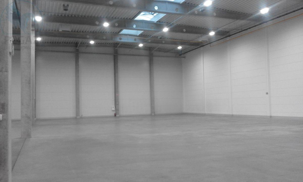Lokal użytkowy na sprzedaż Kostrzyn  2422m2 Foto 7