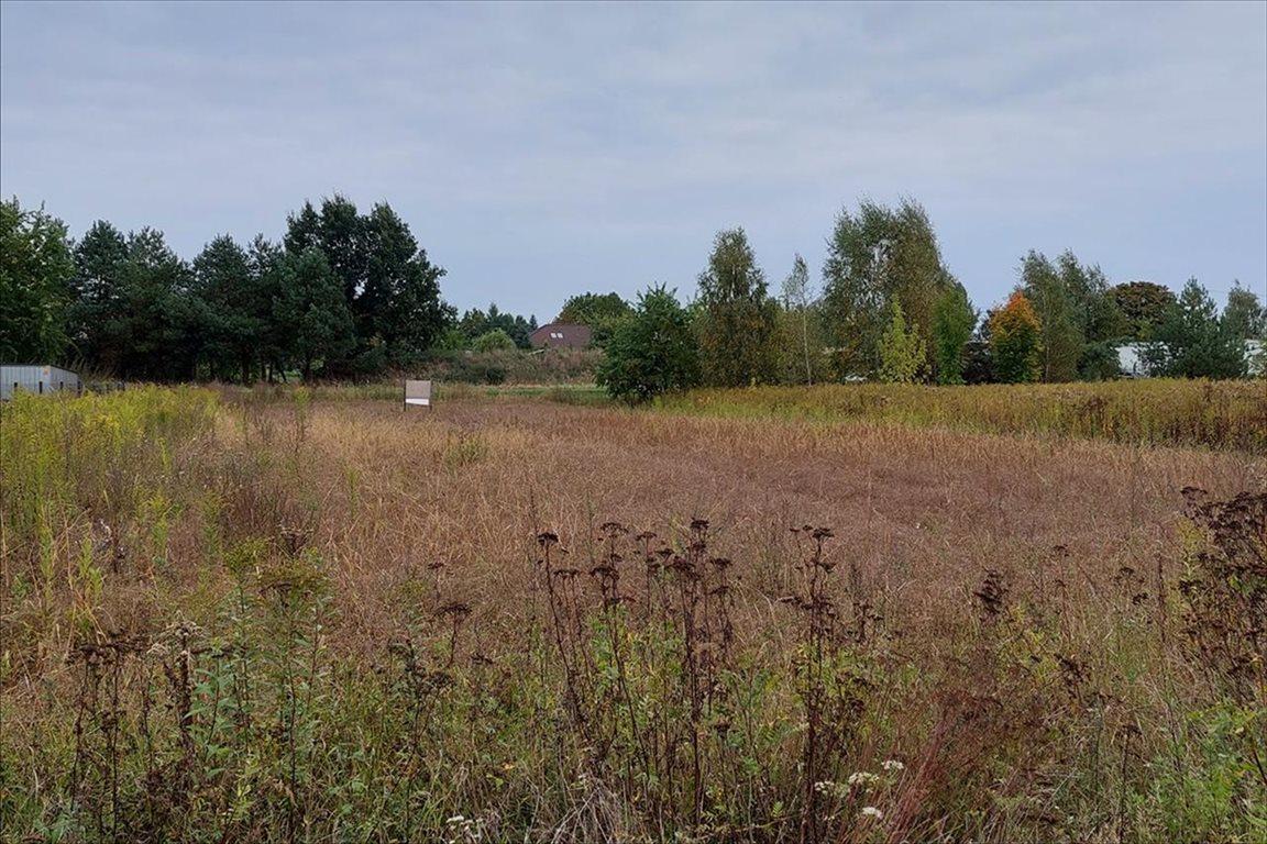 Działka rolna na sprzedaż Toporzysko, Zławieś Wielka  960m2 Foto 1