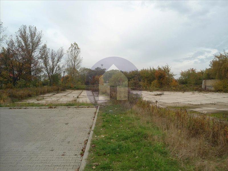 Działka przemysłowo-handlowa na sprzedaż Legnica  5558m2 Foto 5