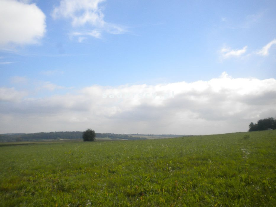 Działka rolna na sprzedaż Gołyszyn  28520m2 Foto 4