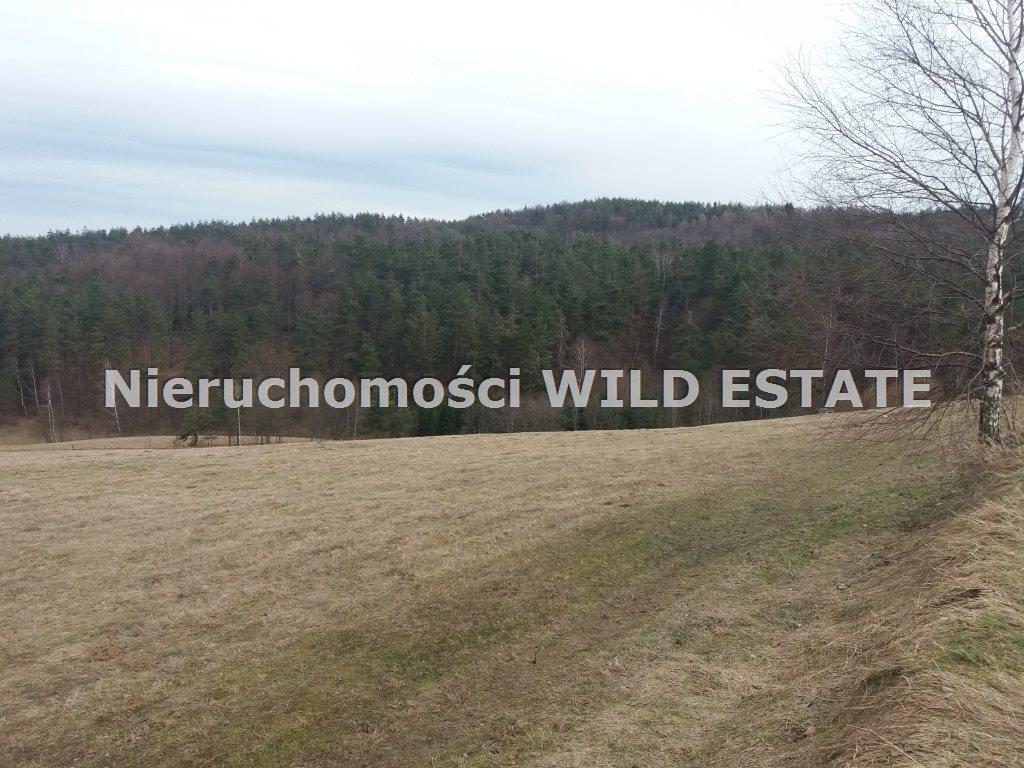 Działka rolna na sprzedaż Solina, Wola Matiaszowa  22400m2 Foto 2