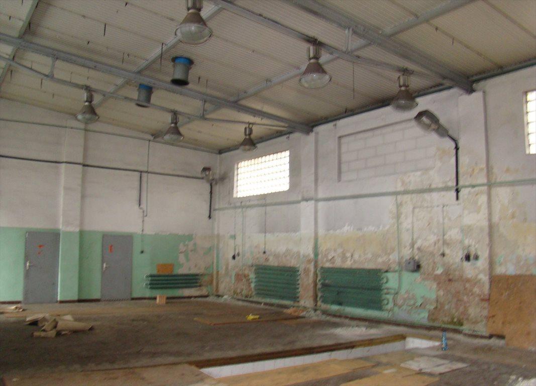 Lokal użytkowy na sprzedaż Nowa Sól, Centrum, ul. Szeroka  563m2 Foto 9