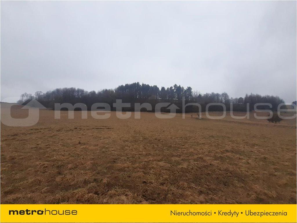 Działka rolna na sprzedaż Rzepedź, Komańcza  5000m2 Foto 3