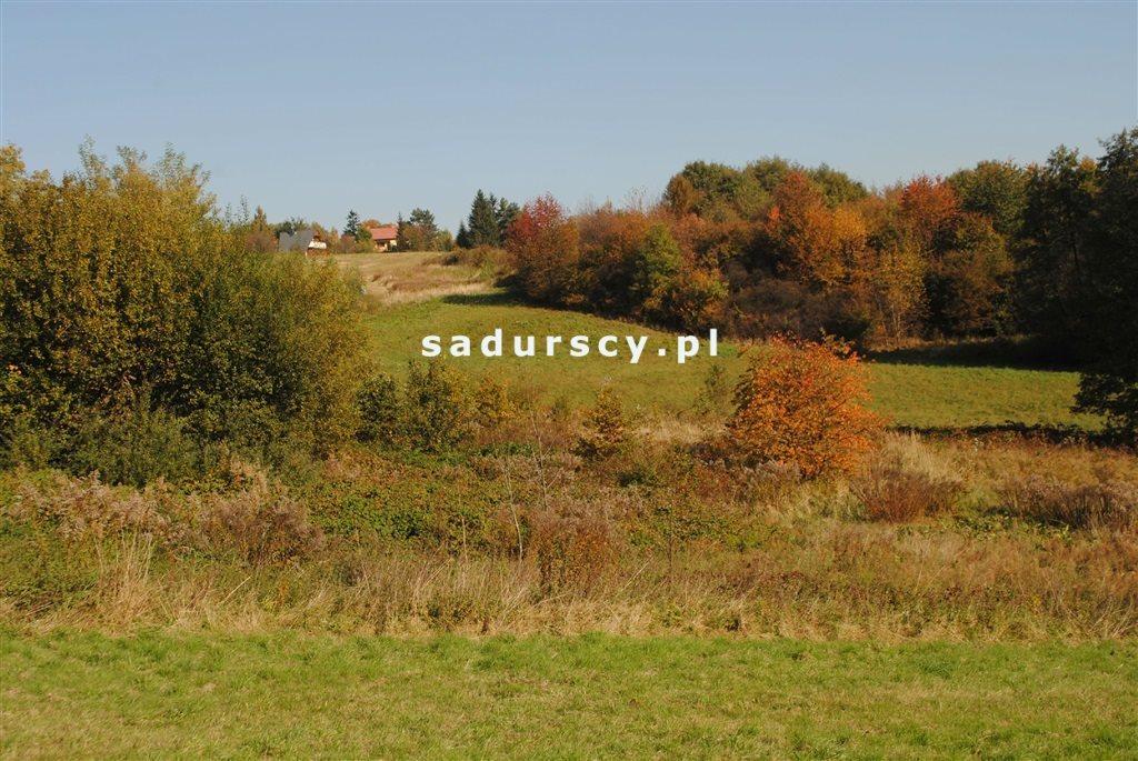 Działka rolna na sprzedaż Kraków, Swoszowice, Rajsko, Golkowicka  2761m2 Foto 1