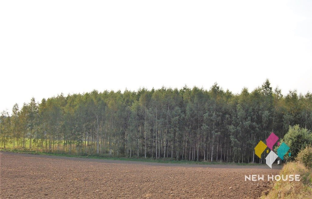 Działka leśna na sprzedaż Barcikowo  41800m2 Foto 5