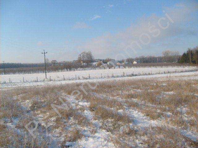 Działka rolna na sprzedaż Mszczonów  9700m2 Foto 7