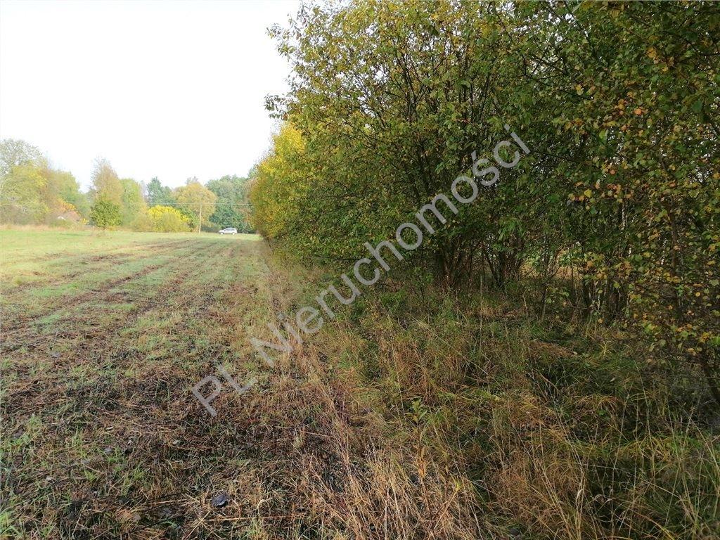 Działka rolna na sprzedaż Rakówiec  3894m2 Foto 4