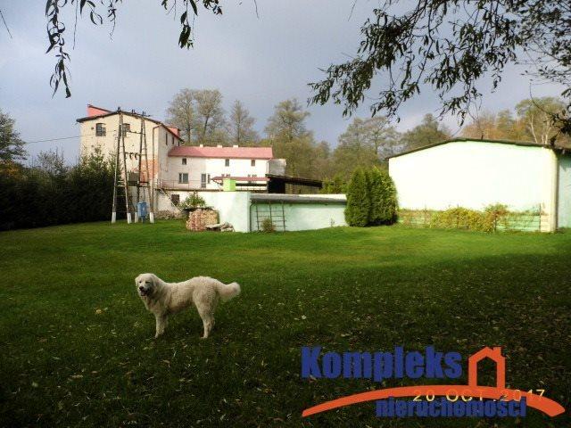 Lokal użytkowy na sprzedaż Czapla  856m2 Foto 1