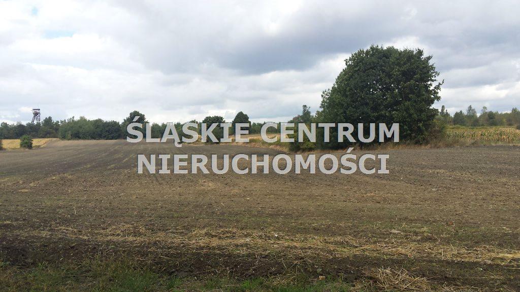 Działka budowlana na sprzedaż Zabrze, Biskupice, Kasprowicza  32420m2 Foto 2
