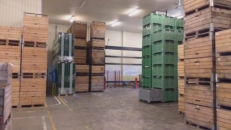 Działka inwestycyjna na sprzedaż Komorów  48000m2 Foto 11