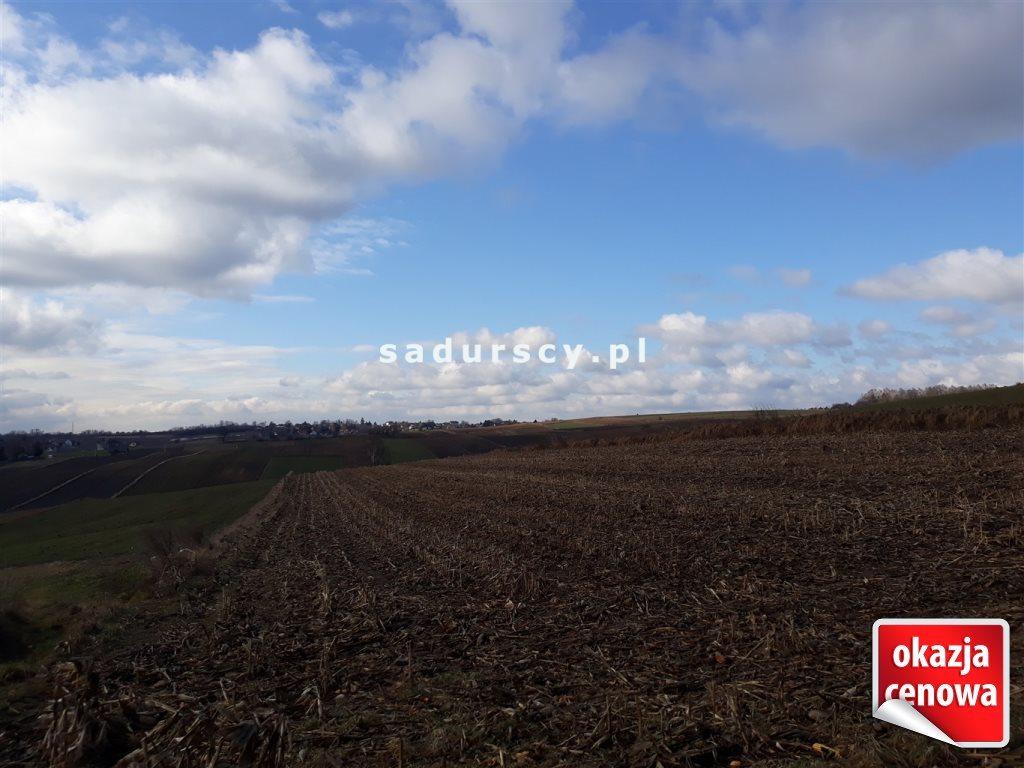 Działka rolna na sprzedaż Głęboka  10143m2 Foto 5