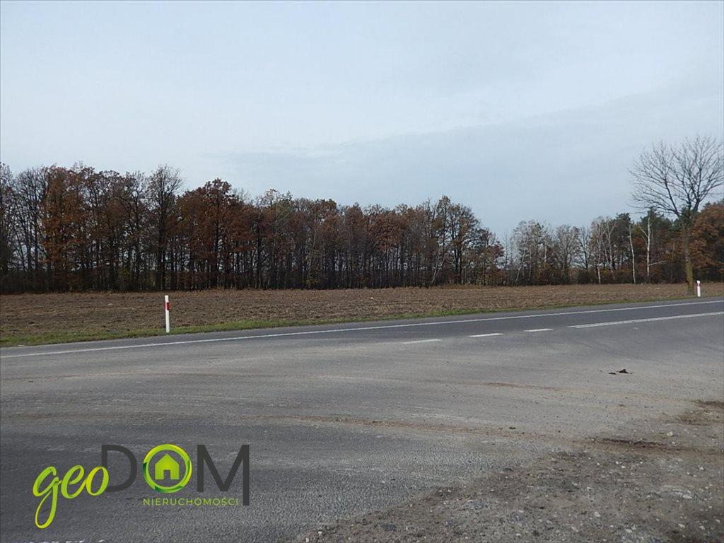 Działka przemysłowo-handlowa na sprzedaż Baranówka  10200m2 Foto 8