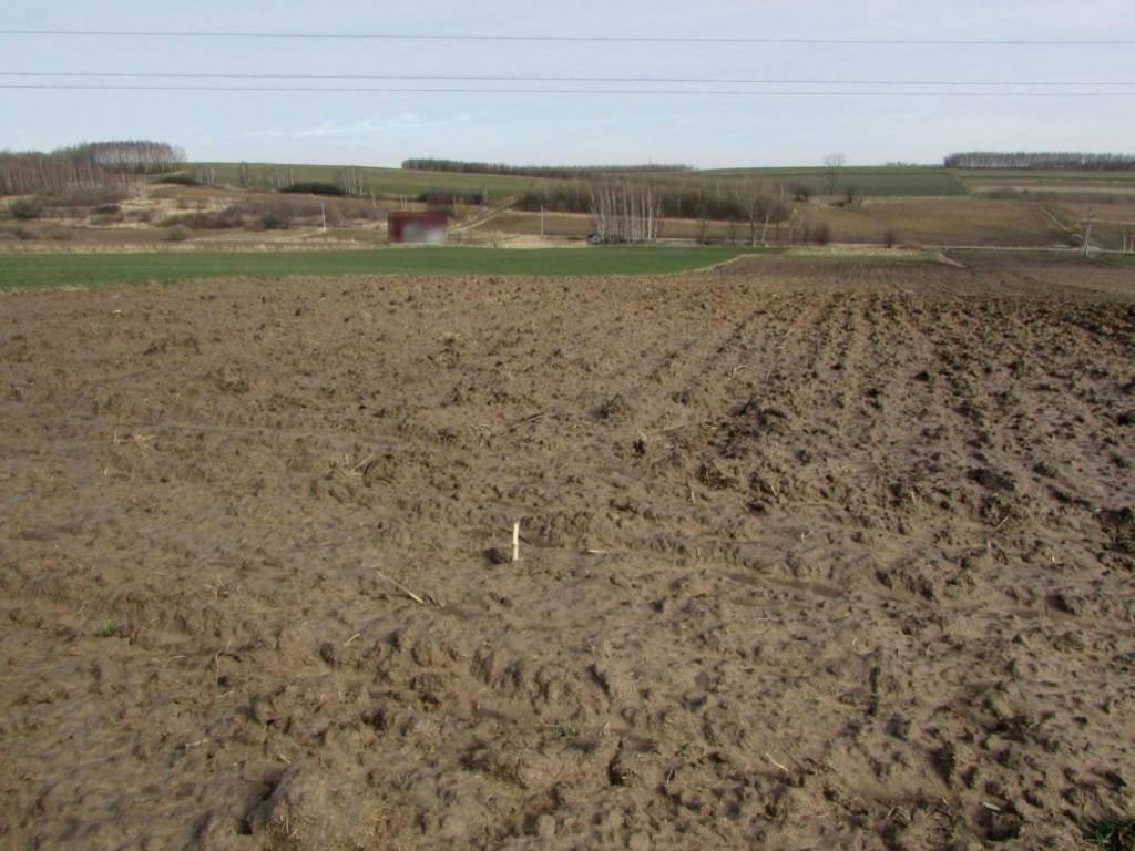 Działka rolna na sprzedaż Wola Zgłobieńska, Wola Zgłobieńska, Wola Zgłobieńska  4600m2 Foto 6
