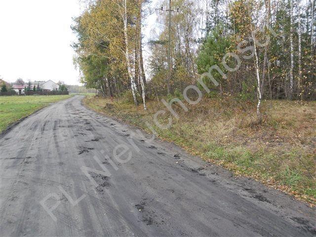 Działka leśna na sprzedaż Wólka Wybraniecka  12500m2 Foto 7