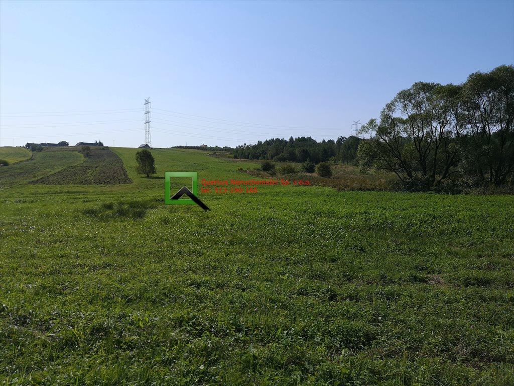 Działka rolna na sprzedaż Rudnik  7200m2 Foto 1