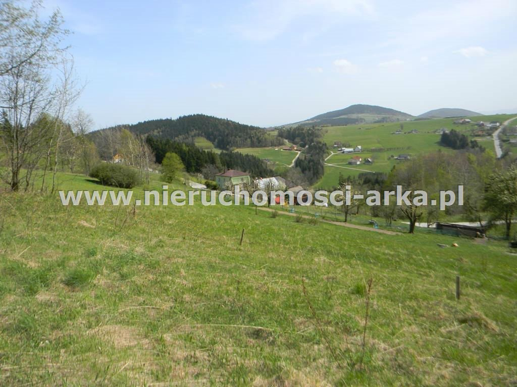 Działka rolna na sprzedaż Stara Wieś  12900m2 Foto 1