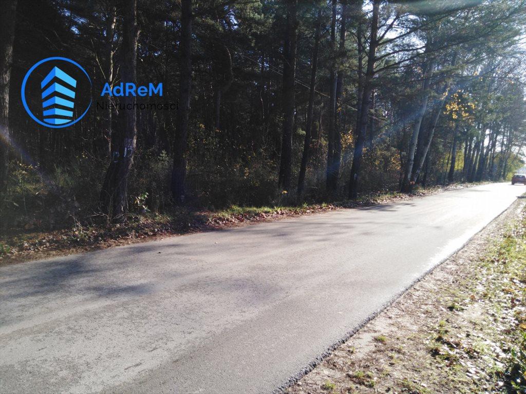 Działka leśna na sprzedaż Jeziórko, Świerkowa  5000m2 Foto 8