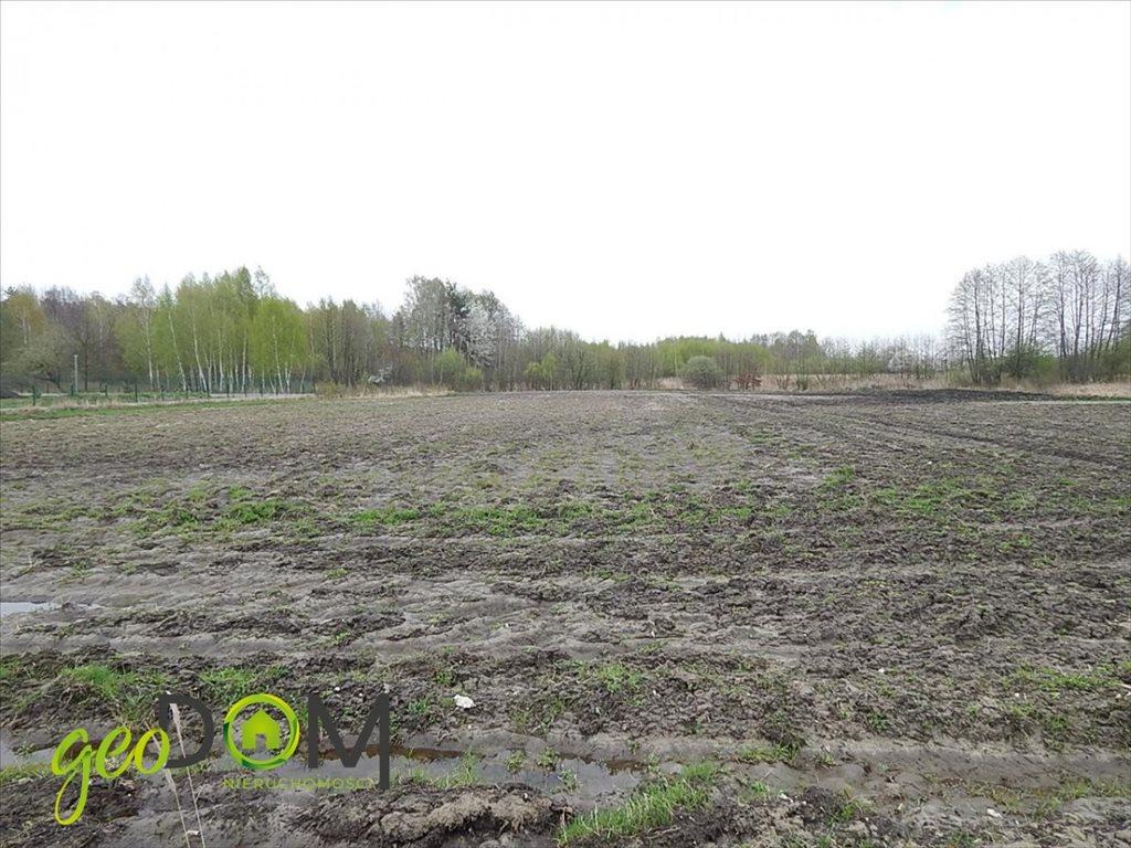Działka budowlana na sprzedaż Ludwinów  7625m2 Foto 7