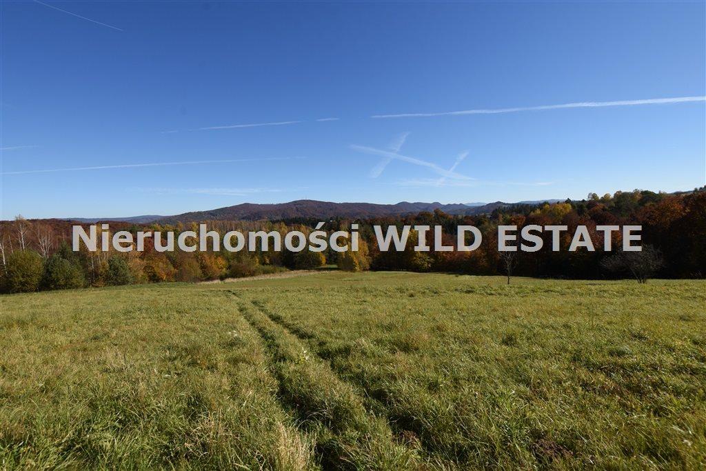 Działka rolna na sprzedaż Solina, Polańczyk  5790m2 Foto 10