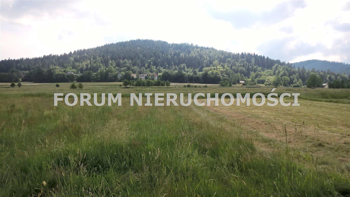 Działka rolna na sprzedaż Słotwina  1000m2 Foto 3